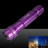 LT-501B 100mw 532nm Green Beam Light Dot Light Style Rechargeable Laser Pointer Pen with Charger Purple>
