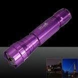 501B 200mW 532nm verde luz de la viga de punto único puntero láser pluma púrpura>                                                   </a>                                               </div>                                               <div class=
