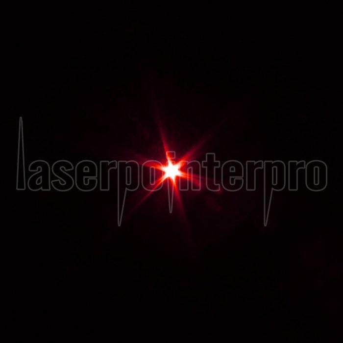 200mW 650nm roter Lichtstrahl Ein-Punkt-Weinflasche geformte ...