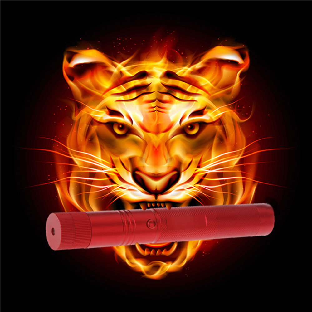 500mW 405nm Starry Sky Style Purple Laser Pointer Waterproof Aluminum Red