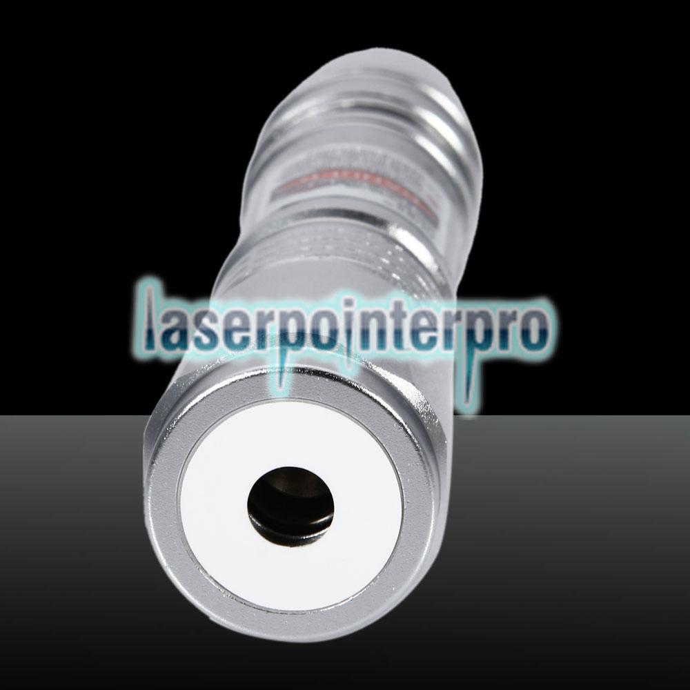 Torcia laser a luce rossa da 300 mW 650 nm argento