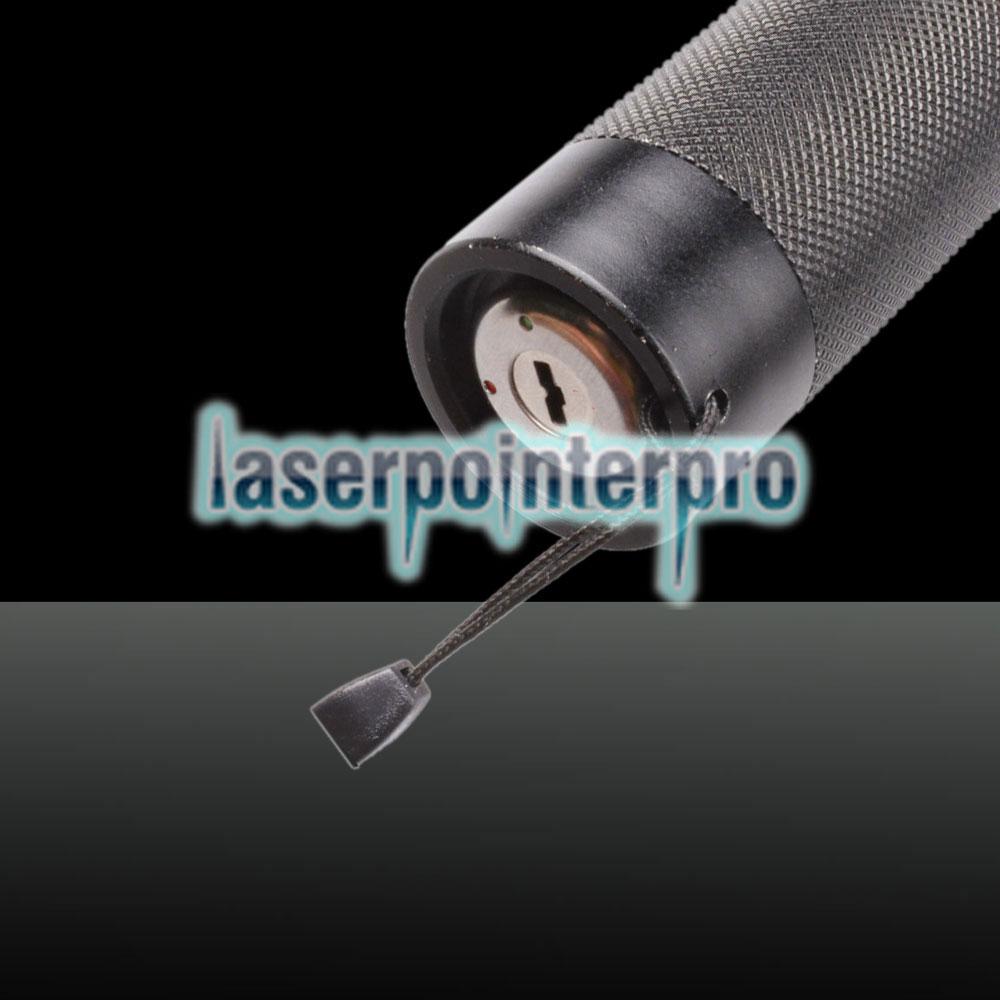 50mw 532nm roter & grüner Strahl Licht Sternenhimmel Licht Stil Laserpointer Set schwarz