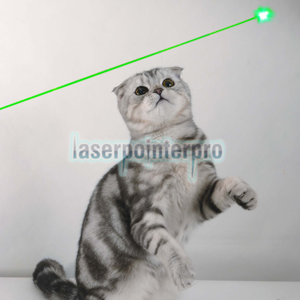 5mW 405nm Beam Light Purple Laser Pointer Pen