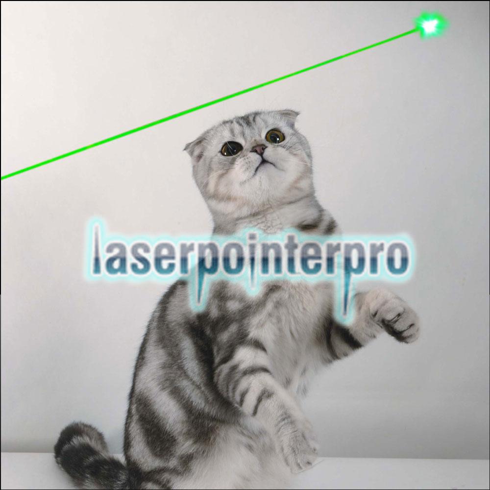 Pointeur laser vert 5mW Gypsophila Light Pattern Professional Vert