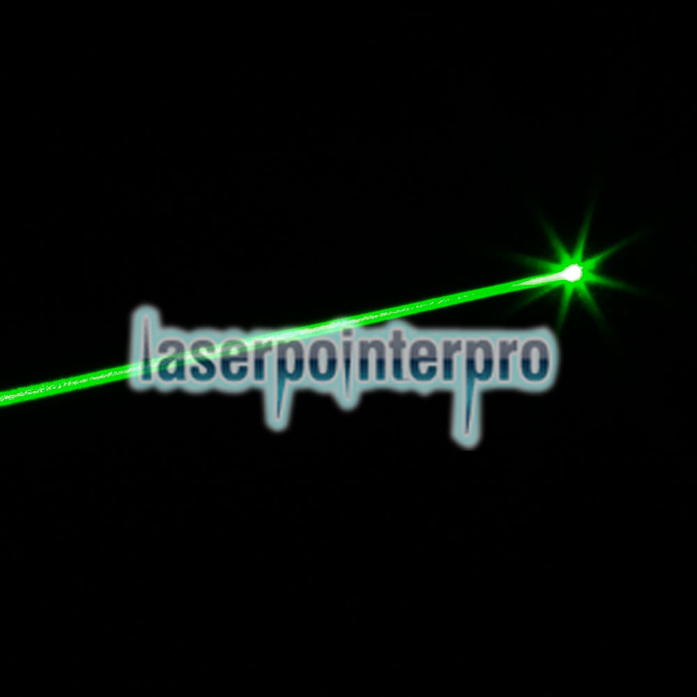 5mW Gypsophila Light Pattern Professional Green Laser Pointer Green