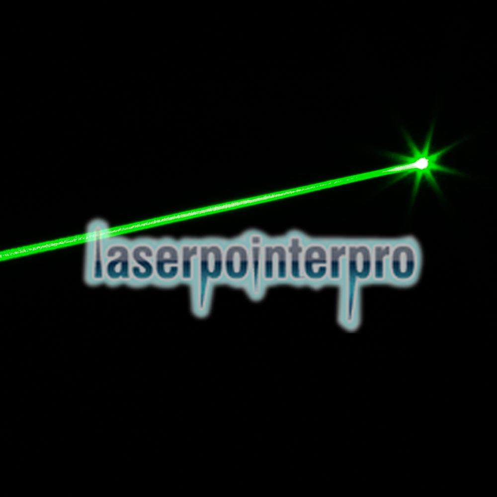 50mW Professional Gypsophila Light Padrão Verde Laser Pointer Verde