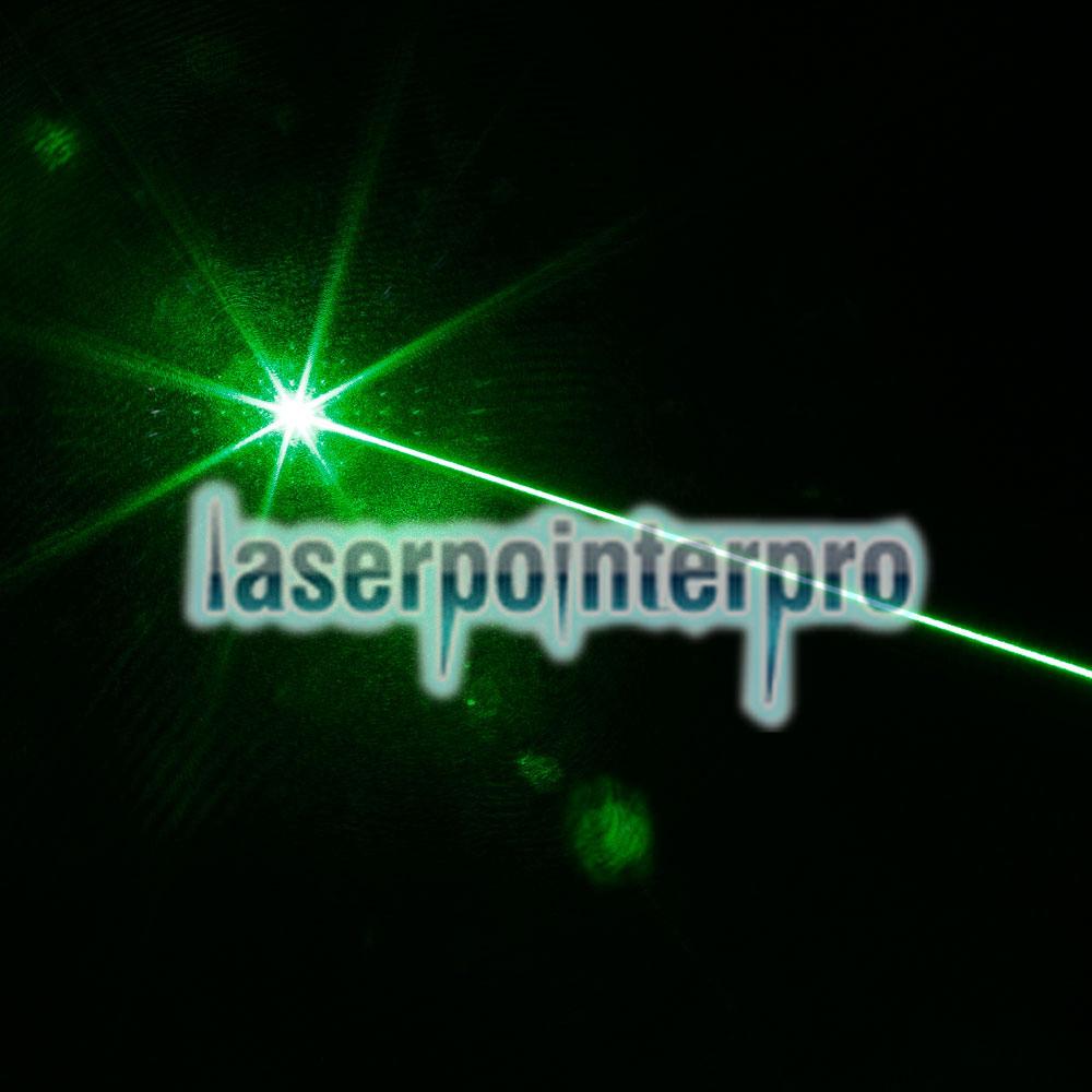 Combinaison de pointeur laser verte professionnelle 300mW avec batterie 16340 et chargeur argent
