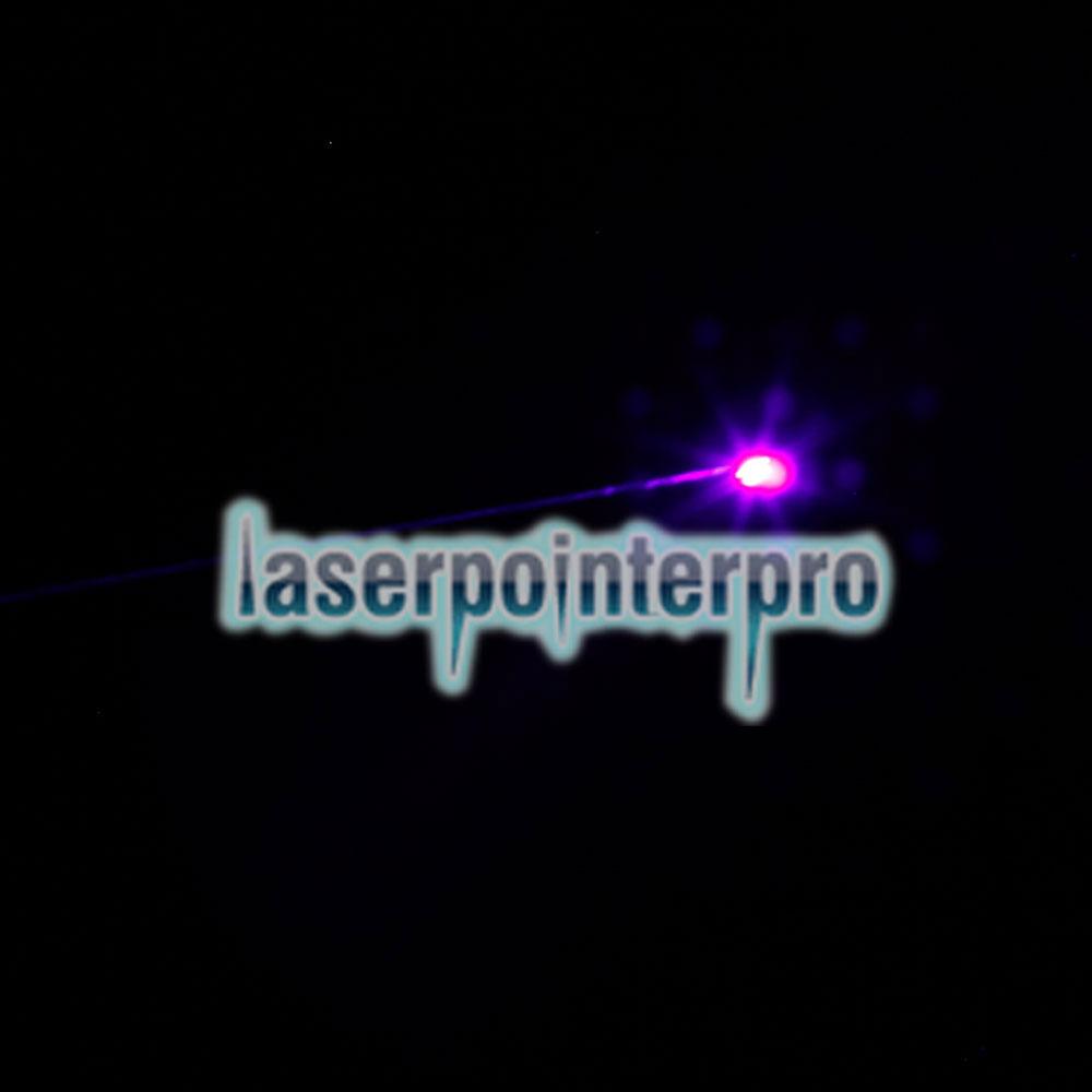 Puntatore laser professionale viola chiaro da 100MW con scatola (batteria al litio CR123A) nero