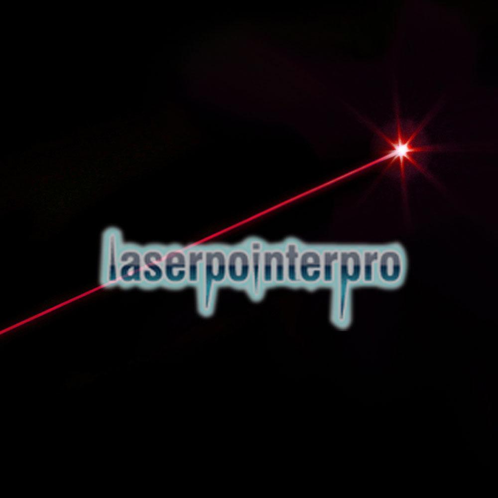 Puntero láser de luz roja profesional de 50MW con caja (batería de litio CR123A)