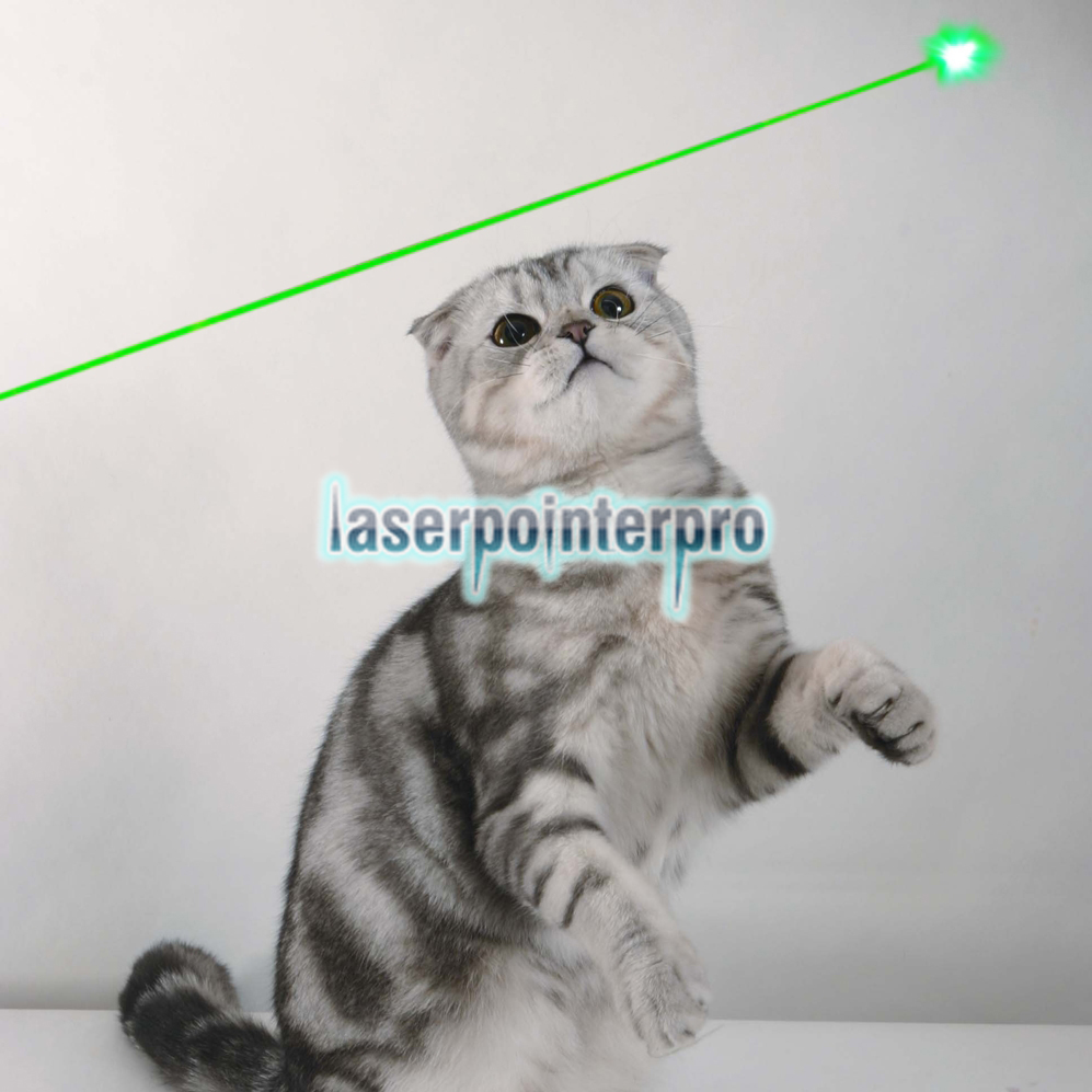 5mW 532nm Green Beam Light Single-point Rechargeable Laser Pointer Pen White