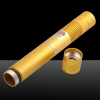 300mW 532nm Green Beam Light Focusing Portable Laser Pointer Pen with Strap Golden LT-HJG0084