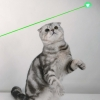 5mW 532nM Tail-open Green Kaleidoscopic Laser Pointer Pen