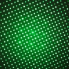 5mW Gypsophila Light Pattern professionnel pointeur laser vert vert