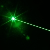 300mW Professional Green Laser Pointer Suit with 16340 Battery & Charger Silver
