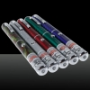 300mW Middle Open Starry Pattern Red Light Naked Laser Pointer Pen Silver
