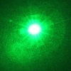200mW 532nm Flashlight Style Green Laser Pointer (1010)