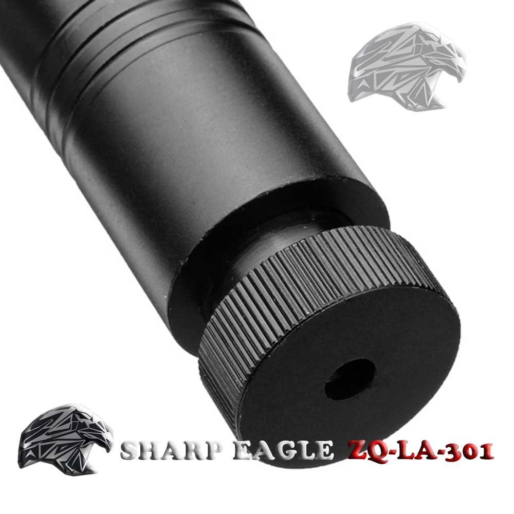 SHARP EAGLE 200mW 405nm Purple Light Starry Sky Style Laser Pointer with Bracket & Case Black