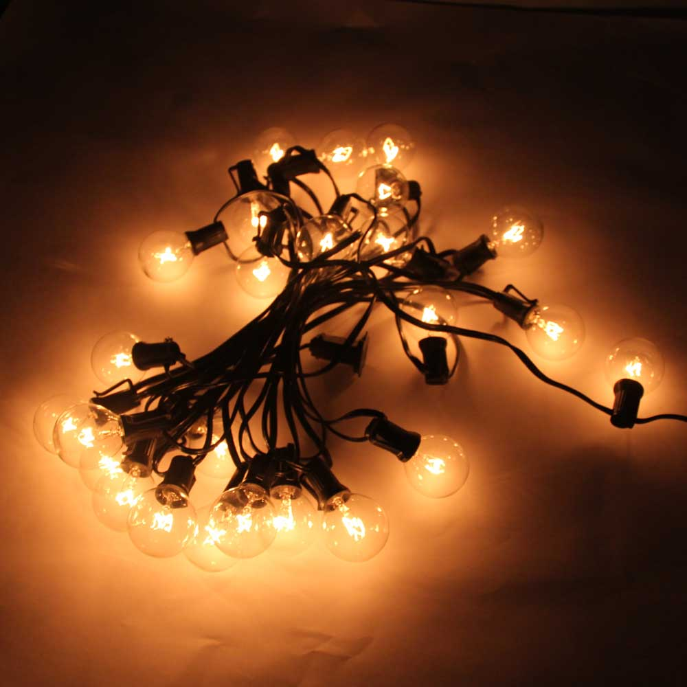 G40 25-LED Light Bulb Outdoor Yard Lamp String Light with Black Lamp Wire Transparent & Silver