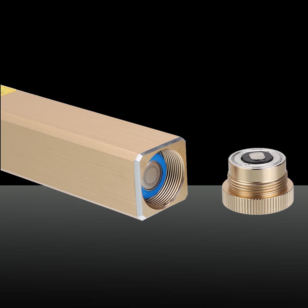 305 200mW 650nm 5 in 1 Puntatore laser rosso ricaricabile Fascio di luce Laser stellato dorato