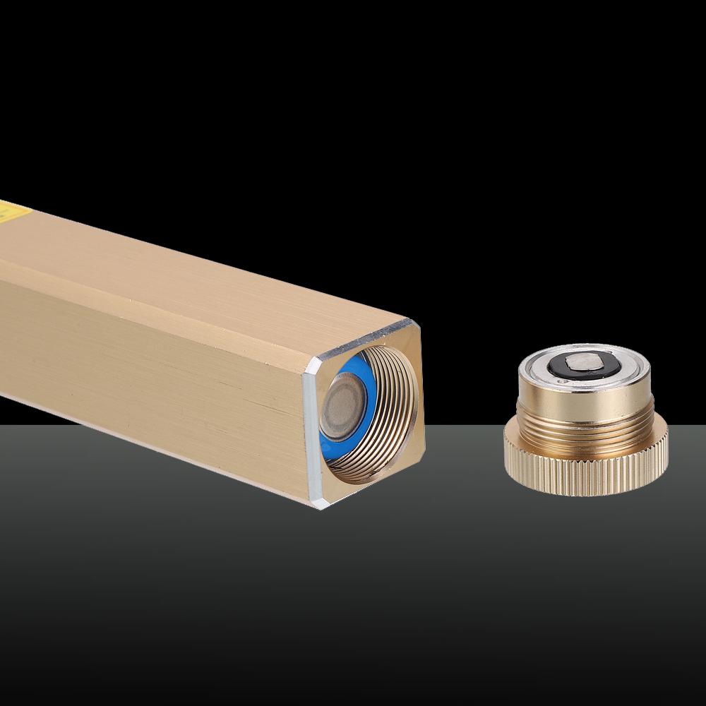 305 200mW 405nm 5 en 1 faisceau de pointeur laser bleu rechargeable laser étoilé doré