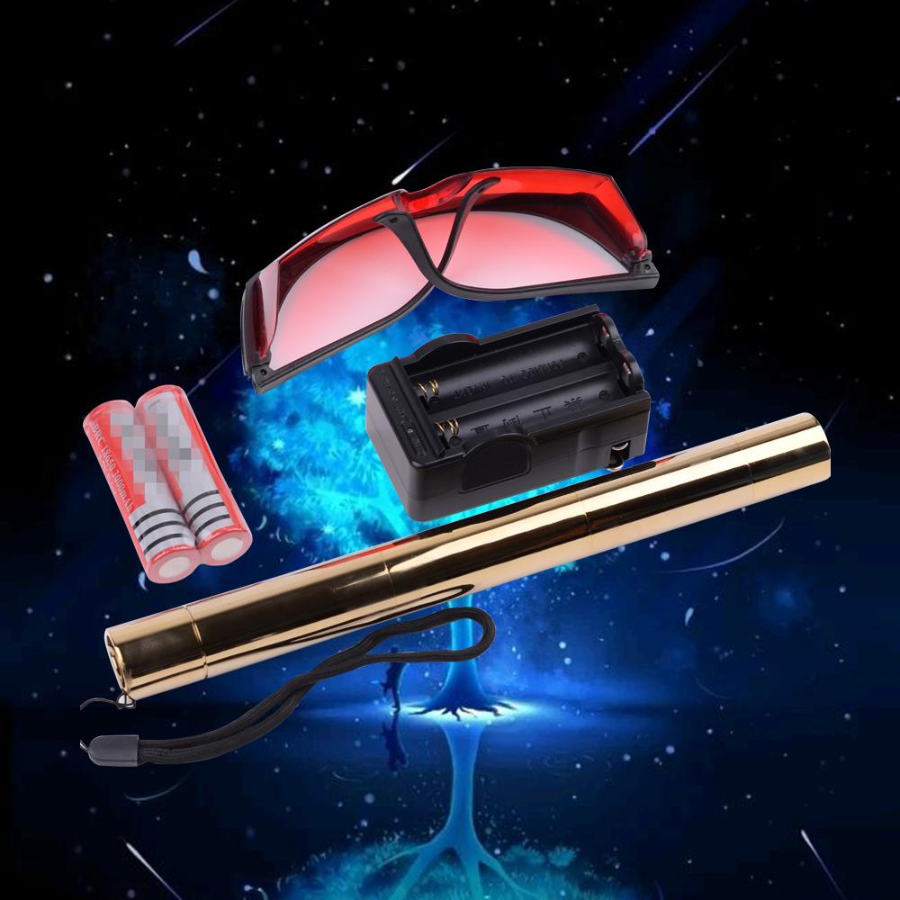 Kits de pointeur laser bleu brûlant 500mw 450nm doré 008